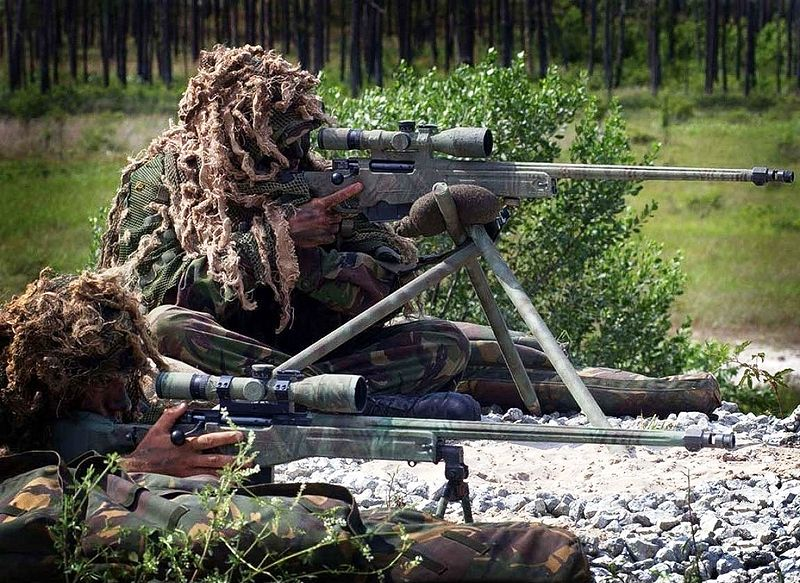 800px_royal_marines_snipers_displaying_their_l115a1_rifles-tfb