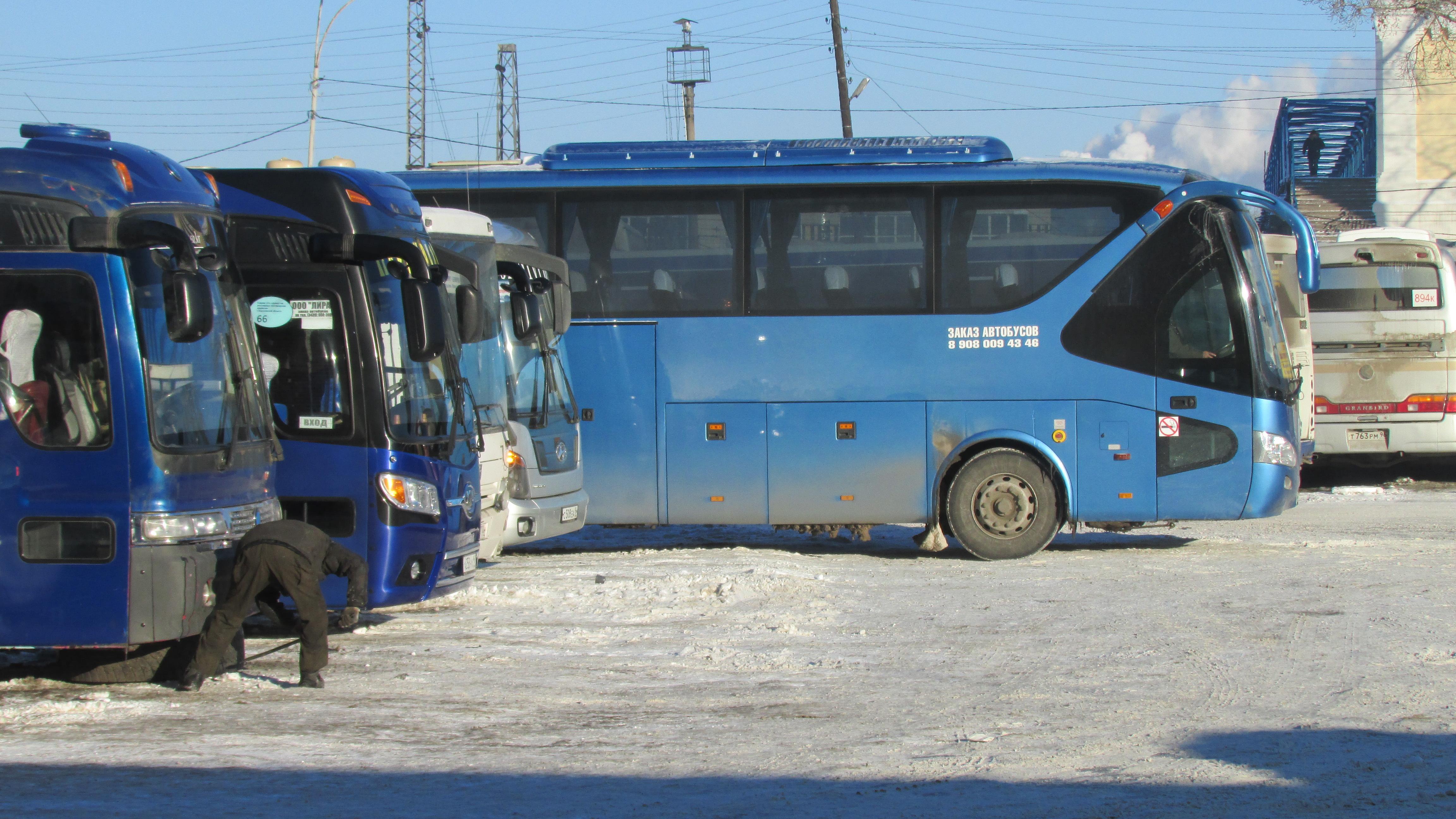 perevozki-avtobusnye
