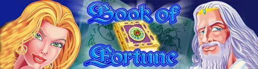 Игровой автомат Book Of Fortune. Обзор и отзывы