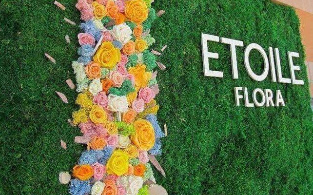 Стабилизированных растений от компании Этуаль Флора