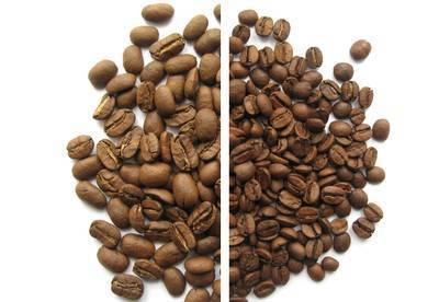 Кофе Марагоджип и его особенности вкуса