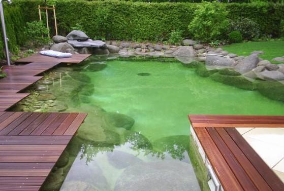 пруд для плавания топ